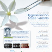 Regeneracion Osea Guiada